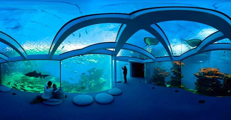 Palma Aquarium en Mallorca