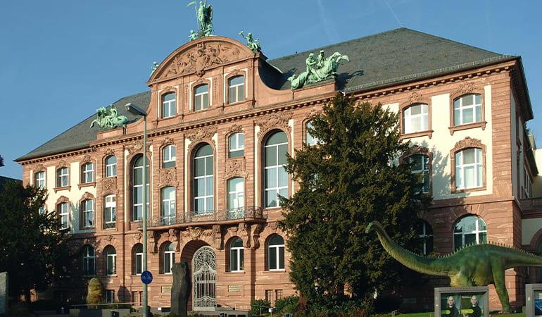 museo Senckenberg, museo que ver en Frankfurt