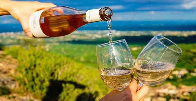 vino de Eslovenia