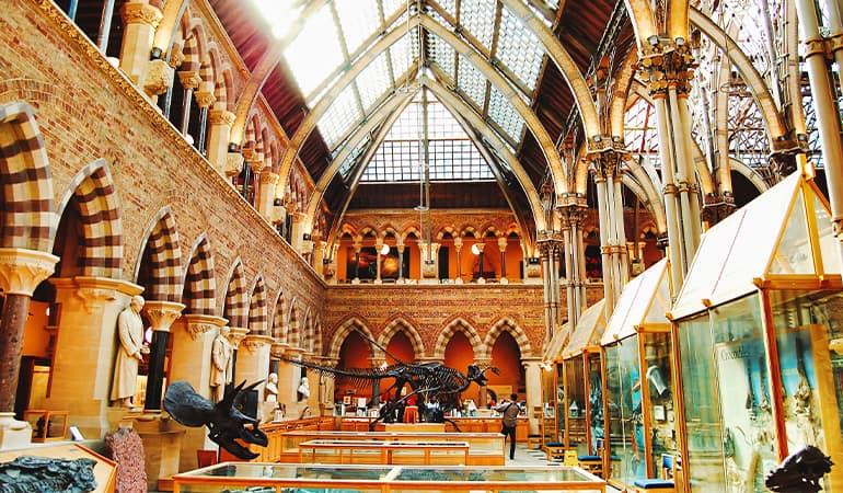 Museo de Historia Natural de la Universidad de Oxford
