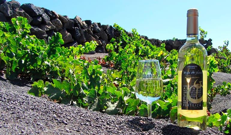 Vino blanco de Lanzarote