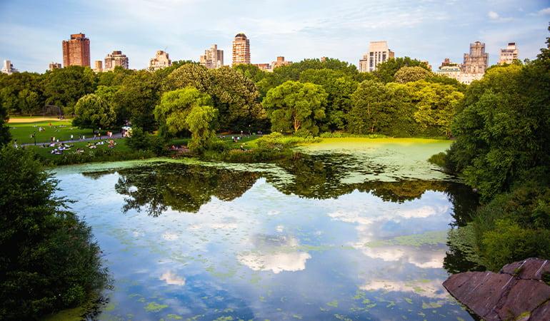 Central Park, uno de los lugares que ver en manhattan